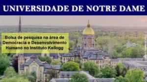Bolsa de Pesquisa na área de Democracia e Desenvolvimento Humano (Univ. de Notre Dame)